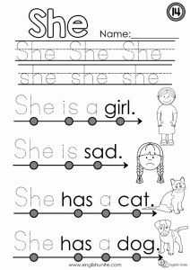 They Sight Word Worksheet Printable or Beginning Reading 14 She