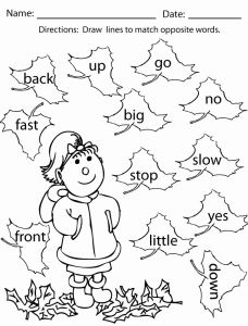 They Sight Word Worksheet Printable or New 294 Sight Word Coloring Pages
